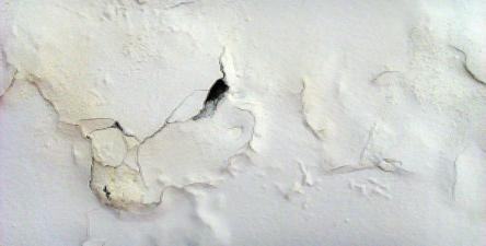 Eliminare salnitro dai muri